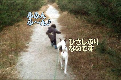 2013-12-05 01.jpg