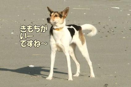 CIMG9485.jpg