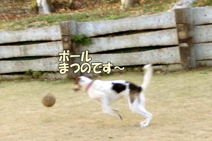 CIMG9734.jpg
