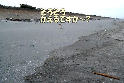 DSCF2313.jpg
