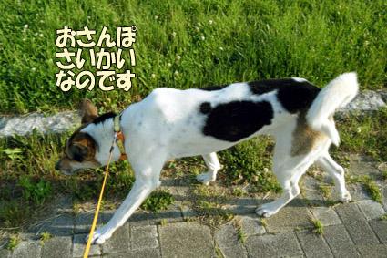DSCF2759.jpg